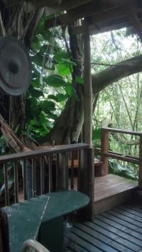 treehouseroom